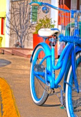 blue bike ashland copy