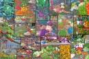 vegetable food collage orig