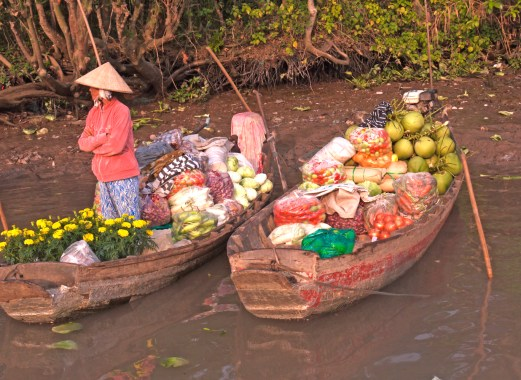 vietnam woman with food boats