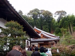 鈴虫寺境内