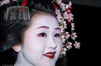 Portrait of a Maiko, Kyoto, Japan