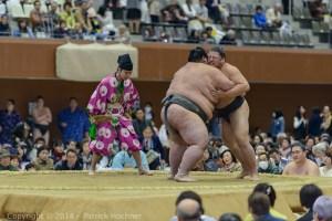 Sumo_Japan-6991