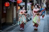 Maiko marchant à Miyagawa-Cho, Kyoto