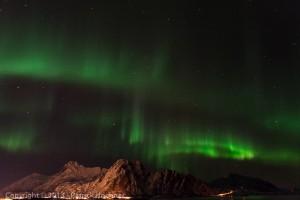 Aurora Borealis a board, Svolvaer, Lofoten, Norvège