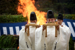 Senior priests bringing leaves and salt for benediction, Fushimi Inari Hitakisai