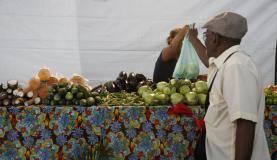 Entre os produtos vendidos na banca estão mandioca, abóbora, abobrinha, quiabo e berinjela