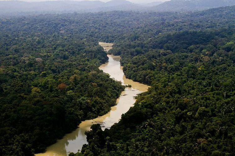 El parque ambiental de Jamanxim es un santuario ecológico de 1.300 hectáreas donde viven especies autóctonas de la Amazonia