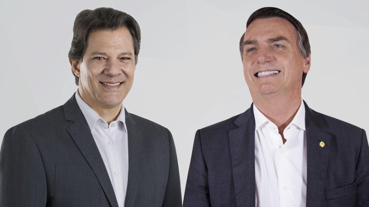 Bolsonaro x Haddad quais são as propostas para a educação brasileira. FOTO DIVULGAÇÃO