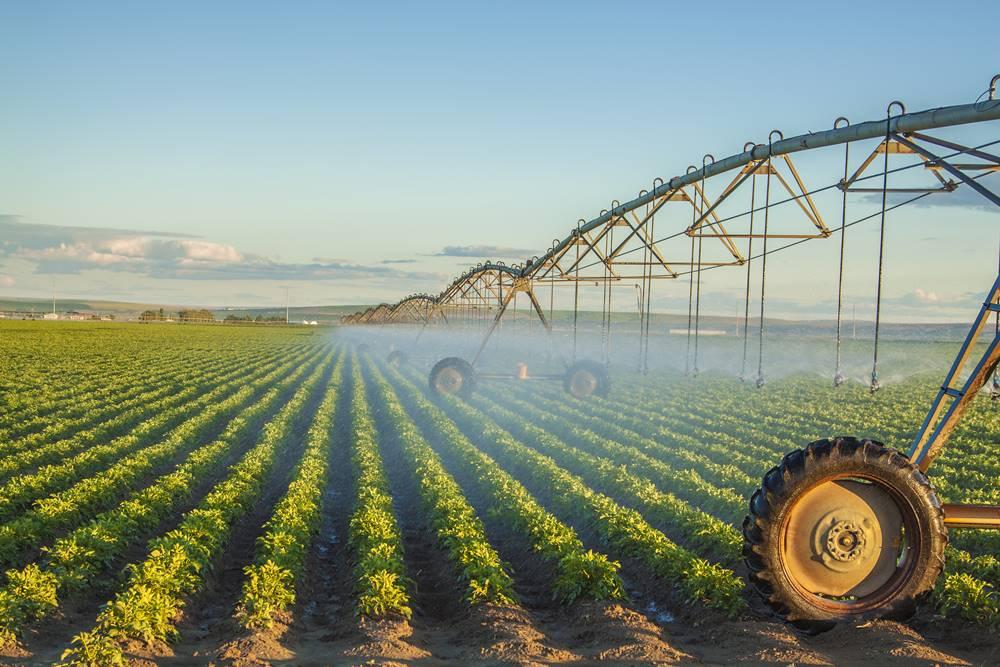 Expansão do agronegócio valoriza o profissional de engenharia agronômica