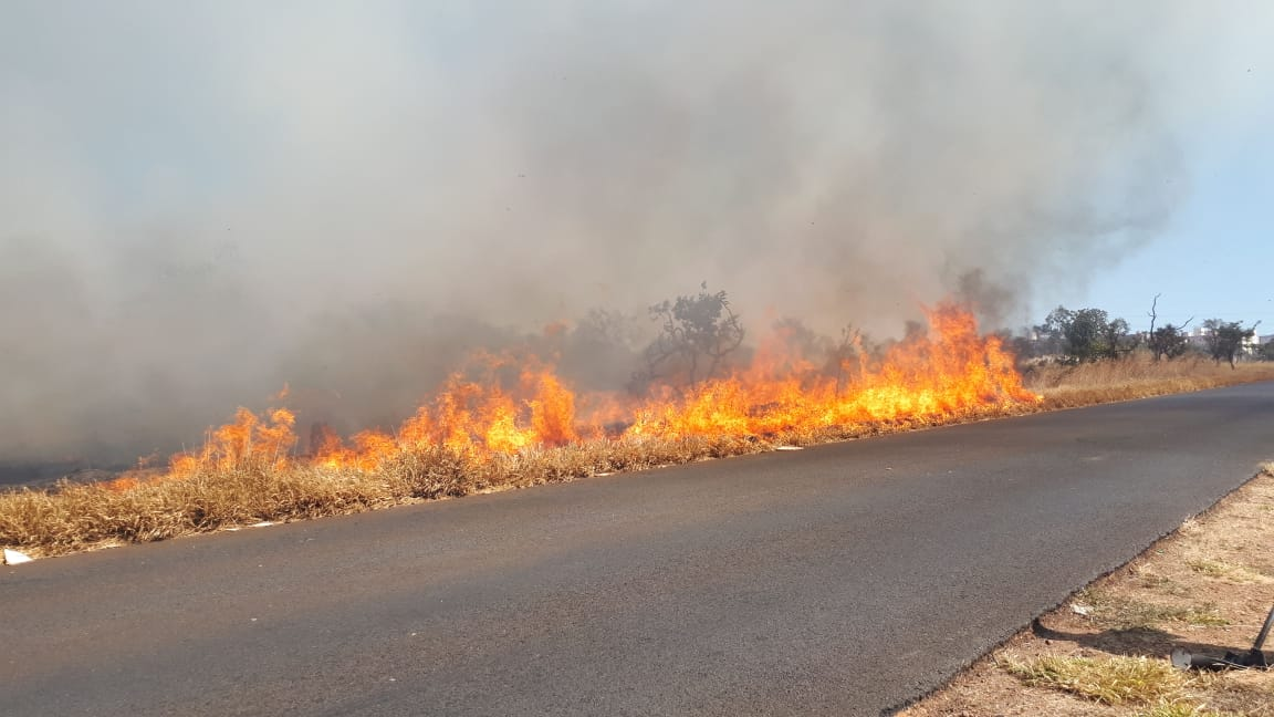 Governo suspende a prática de queimadas no Brasil