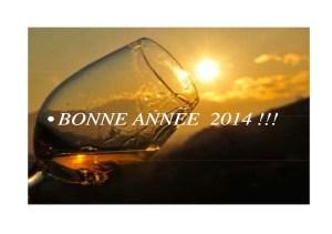 photo bonne année 2014