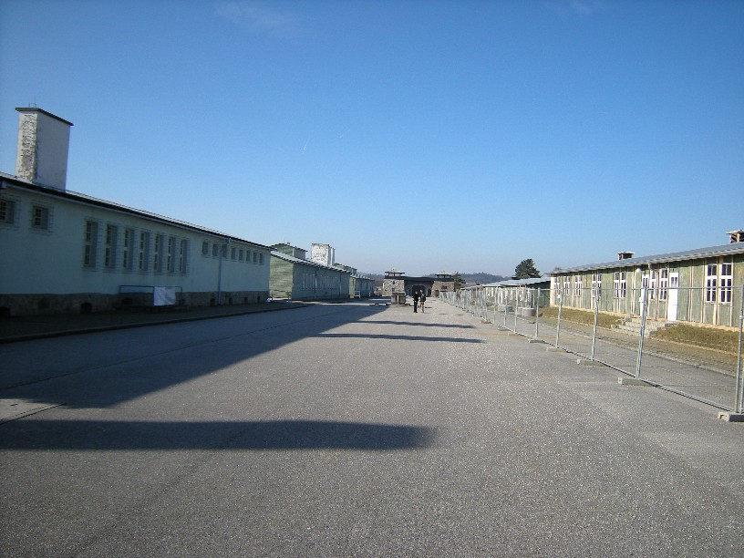 singuratate-la-mauthausen.jpg