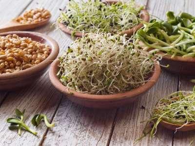 Anti-Nährstoffe + 5 Methoden, wie man sie los wird