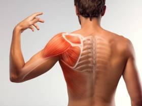 Übung zur Prävention des Schulter Impingement Syndroms - So funktioniert's!   Studien Review