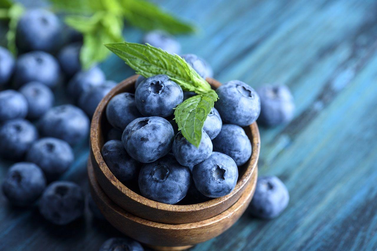 Sekundäre Pflanzenstoffe, die du kennen solltest – Wie sie wirken und unsere Gesundheit beeinflussen