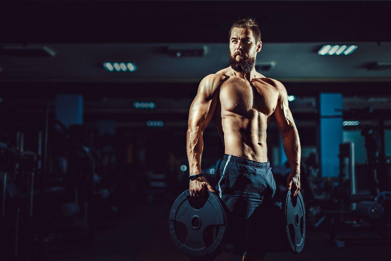Split-Training erläutert + 2er Split Trainingsplan (Oberkörper / Unterkörper)