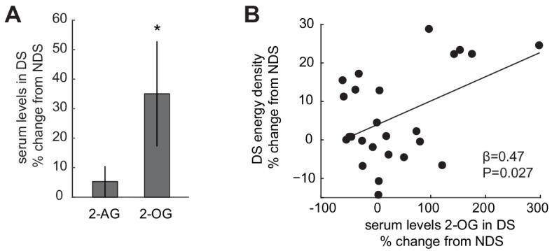 Schlafabhängige Veränderungen im Endocannabinoid-System korrelieren mit energieintensiven Nahrungsentscheidungen: (A) Relative Veränderungen der 2-AG- und 2-OG-Werte im DS-Zustand (%-ige Veränderung gegenüber NDS-Basiswert). Die Daten werden als Mittelwert ± SEM dargestellt. (B) Prozentuale Veränderungen in 2-OG in DS von der NDS-Basislinie korrelieren positiv mit %-igen Veränderungen der Energiedichte von Lebensmitteln, die am ad libitum Buffet im DS-Zustand konsumiert werden, im Vergleich zur NDS-Basislinie (robuste Regression, β = 0,47, p=0,027).