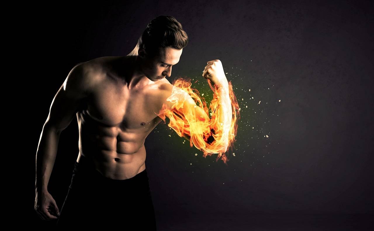 Schlank(er) durch braunes Fettgewebe: Eine körpereigene Maschinerie zur Steigerung Fettverbrennung?