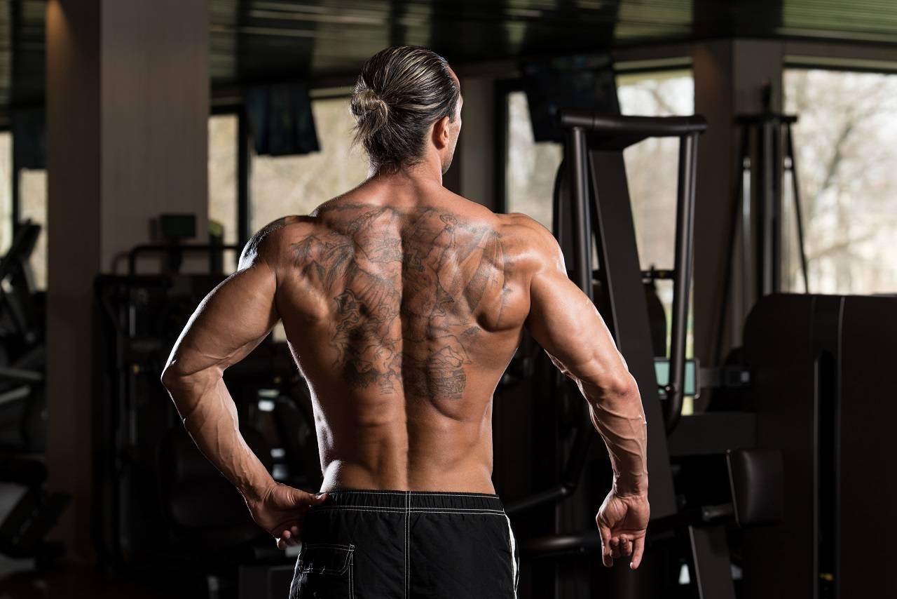Optimaler Muskelerhalt während der Diät: Wie schnell darf das Gewicht sinken?