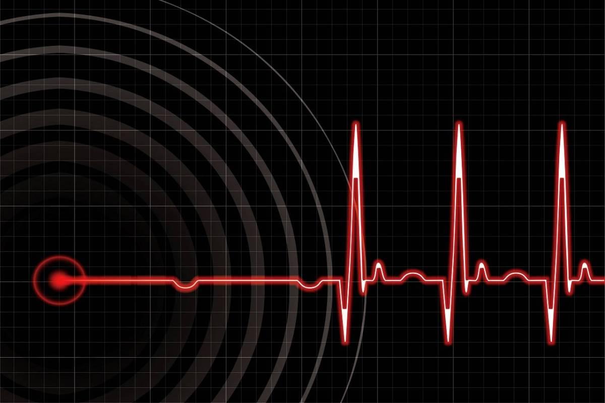 Herzratenvariabilität (HRV), Herz & Emotionen I: Indikatoren der Vitalität