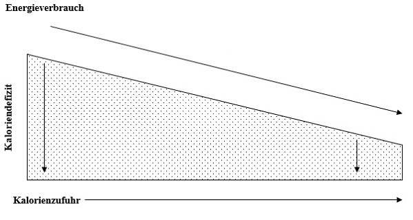 Schematische Darstellung der adaptiven Thermogenese unter illustrativer Darstellung des resultierenden Energiedefizits. (Bildquelle: Roth & Spiegel, 2020)