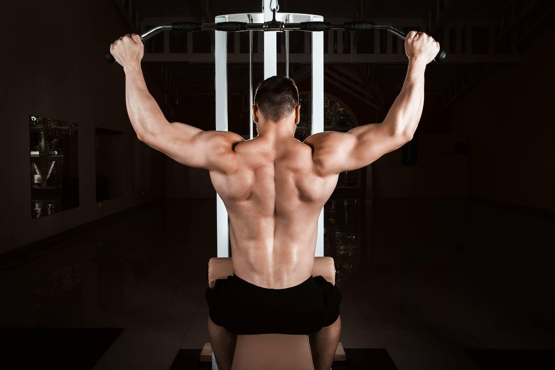 Kraftsport bei kohlenhydratarmer Ernährung: Niedrige Glykogenspeicher hemmen nicht die Muskelproteinsynthese
