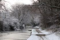 Winters day