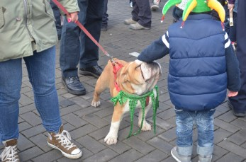St. Patrick's Day! Here's the mascot.