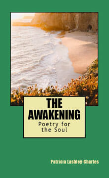 The-Awakening Book