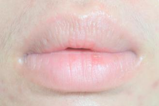 [Review] Lynx Bloom Me Lips in Gorgeous Lily