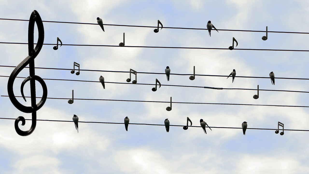 Treble clef and notes on high wires!
