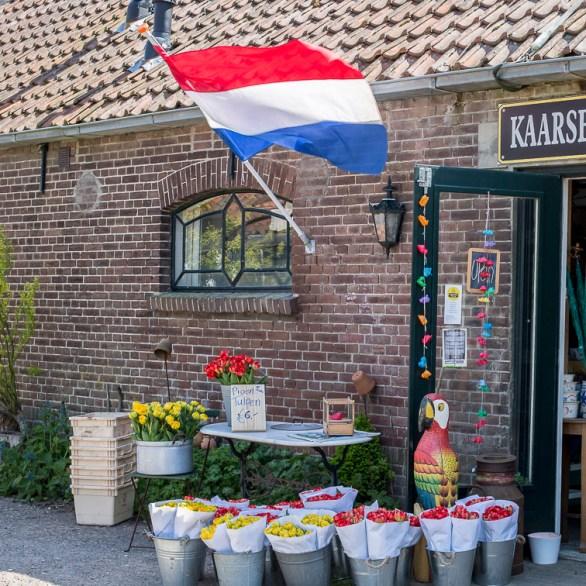 Bloemenfestival-2017-De-Olmenhorst-035
