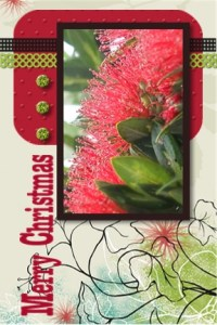 Flower card 7