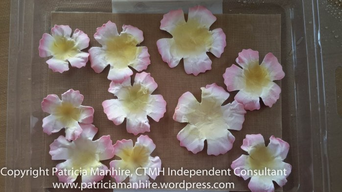 CTMH Flowers ready to place onto the card