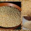 Blog97 - Os Benefícios Da Quinoa