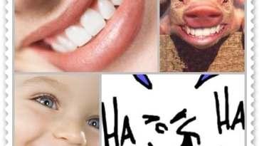 sorria - Sorria!!!