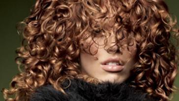 deva curl Cachos1 - Receitas Caseiras Para Cabelos Cacheados: Higienização, Livro Curly Girl