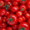 tomate - Combata As Rugas Com O Tomate!