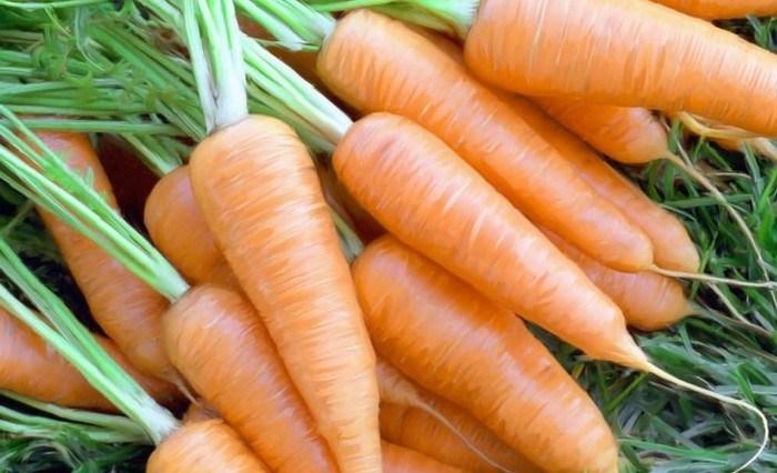 alimentos hidratam - Quais alimentos hidratam o corpo?