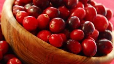 chanberry - Você conhece os benefícios do chanberry?