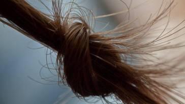 580726 479636725446442 1040019057 n - Nós nos cabelos? Dê fim a eles agora mesmo!