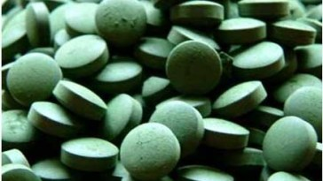 High Quality Spirulina Chlorella - Benefícios do Fucus Pra Saúde