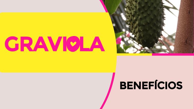 graviola - Graviola: Benefícios e Nutrientes