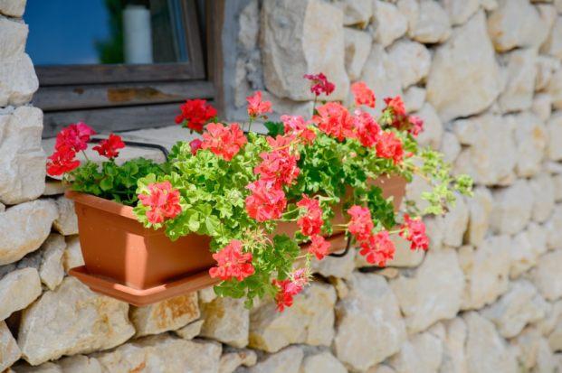 iStock 000047689008 Small - 5 dicas de decoração para transformar sua casa sem gastar muito