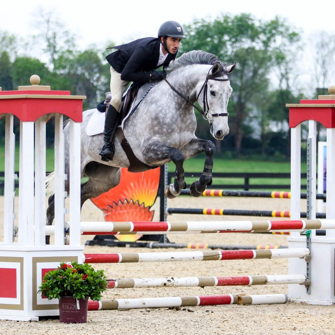 SCF Young Horse Show