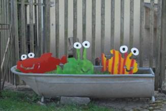 Fische in der Badewanne