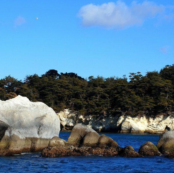 A trip to Matsushima Bay, Japan