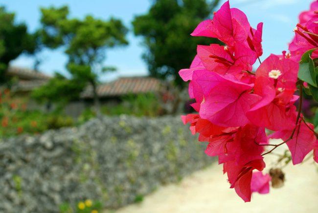 A trip to Taketomi island, Okinawa