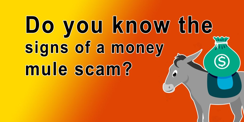 Do you know the signs of a money mule scam?