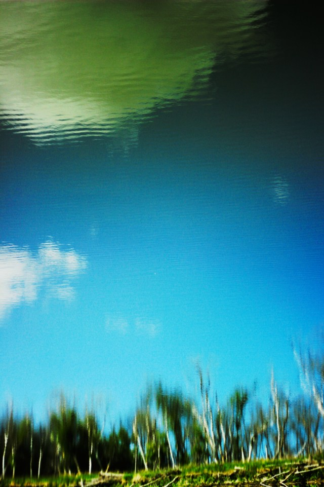 Trees and sky reflected in the Assiniboine River